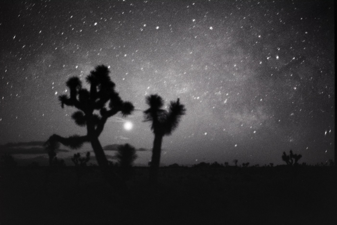 Photographing the milky way on film joshua tree